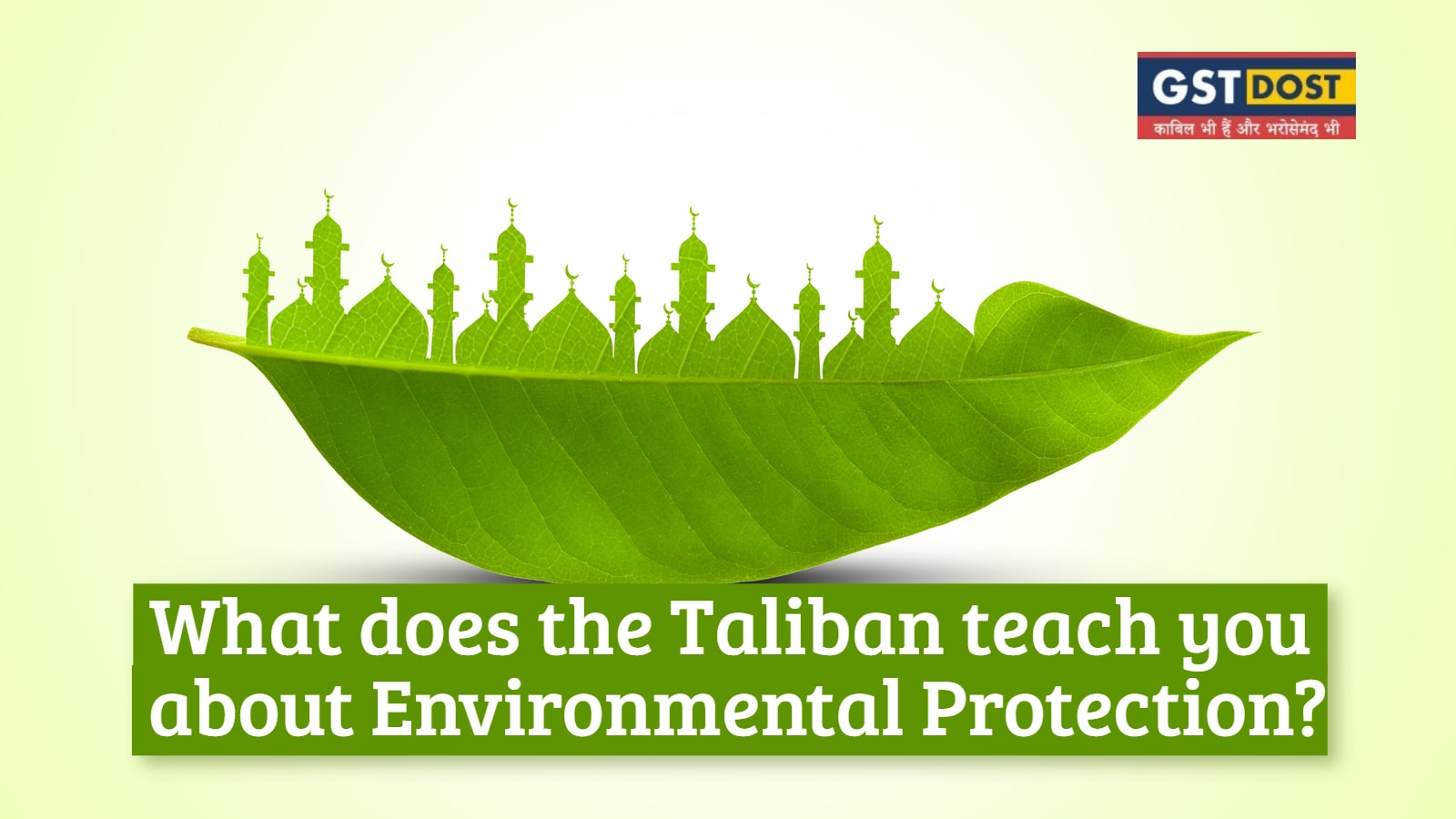 What does the Taliban teach you about Environmental Protection?